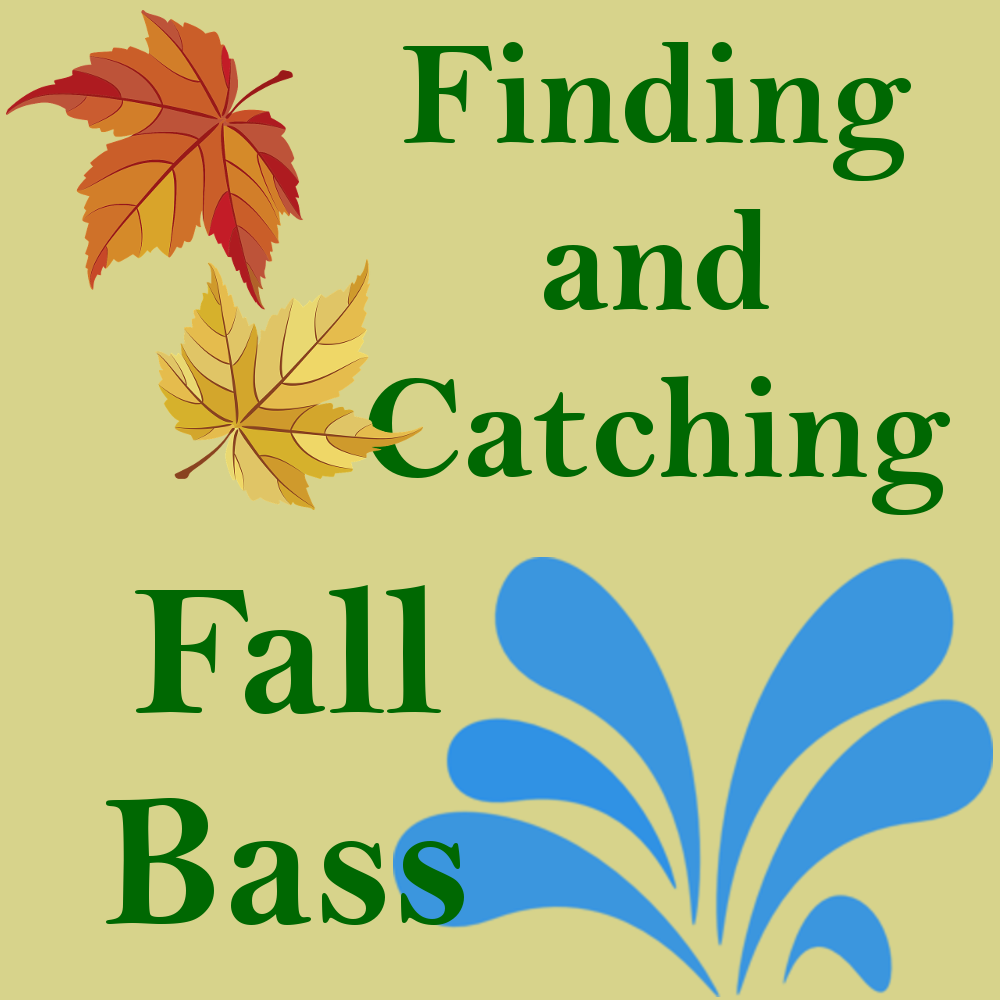 IG Fall Bass