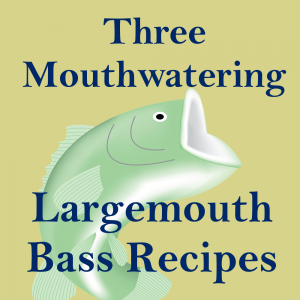 IG bass recipes